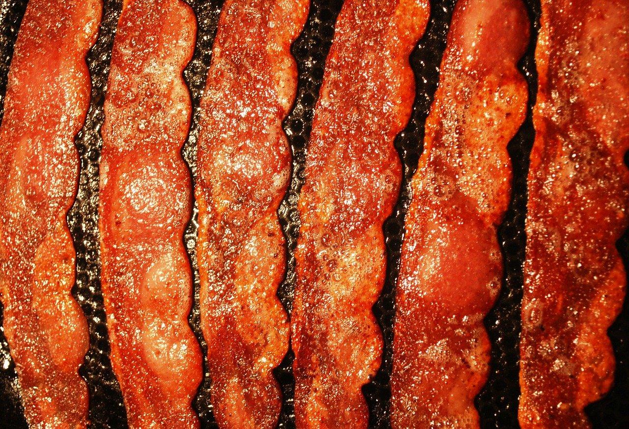 dogs turkey bacon
